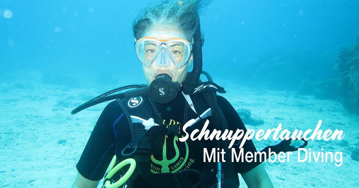 Ein aufregendes Abenteuer – Schnuppertauchen mit Member-Diving!