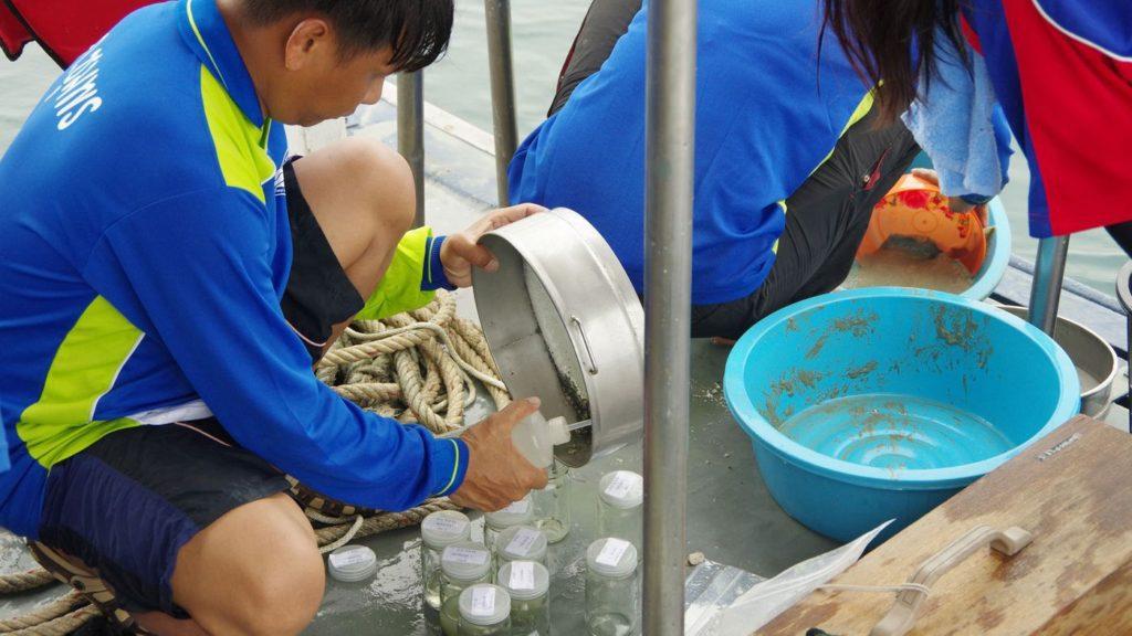 Fische Zählen im Golf von Thailand
