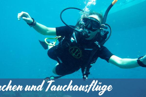 Tauchen und Tauchausflüge mit Member Diving