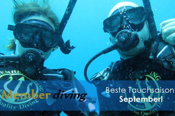 Tauchkurse und Tauchen mit Member Diving