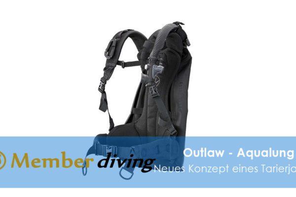 Tauchen, Tauchkurse, Member diving