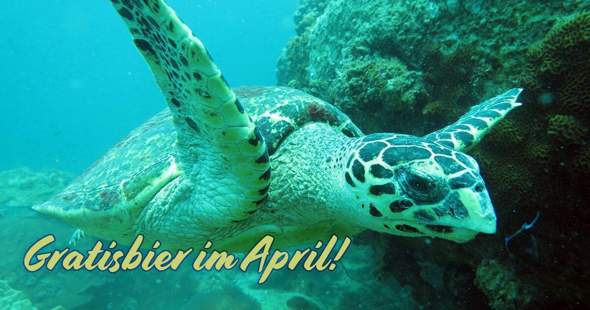 Gratisbier im April