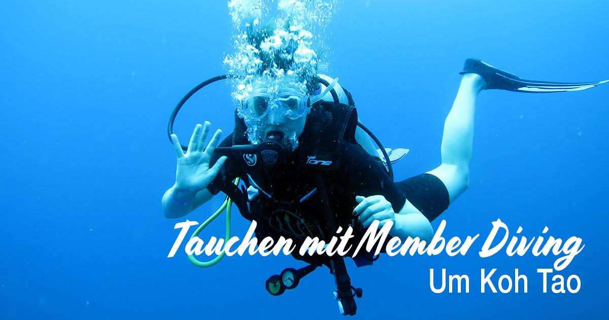 Tauchen um Koh Tao, mit Member Diving