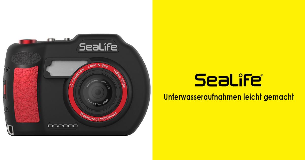 Sealife DC 2000 – Unterwasseraufnahmen leicht gemacht
