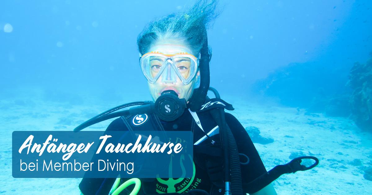 Anfänger Tauchkurse bei Member Diving
